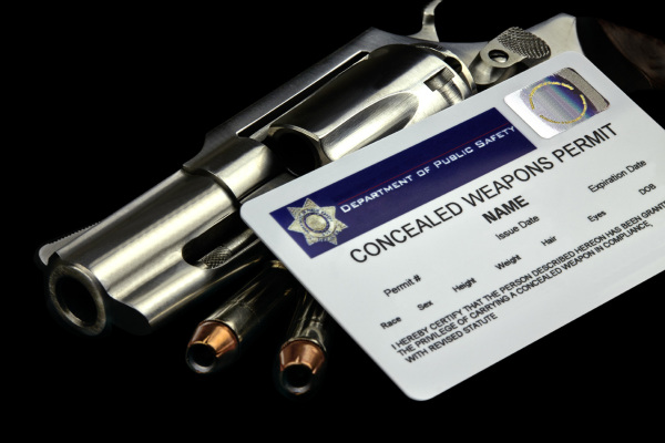 "NY Police Won't Charge Gun Owners Who ""Unknowingly"" Don't Recertify by Jan. 31st"